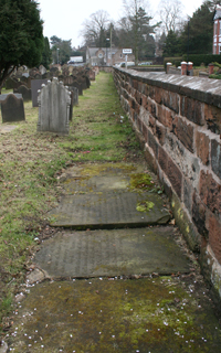 Graves on overgrown path